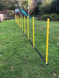 Dog Agility Basic 12 Pole Weave set + 12 Pole Webbing by Jessejump Agility