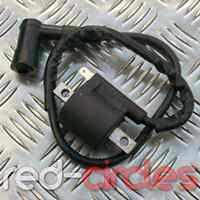 PIT DIRT ATV QUAD BIKE IGNITION COIL & HT LEAD 90cc 110cc 125cc 140cc 200cc (3)