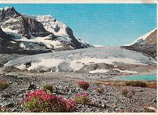 John Hinde Ltd Collectable International Postcards (Non-UK)