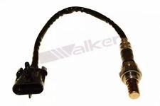 Lambdasonde Walker Products 250-24788
