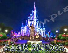 Florida Disney MAGIC KINGDOM - Travel Souvenir Flexible Fridge Magnet