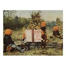 """Halloween-""Pumpkins In The Harvest Field /Read Religion Book/ ('Postcard'#59)"