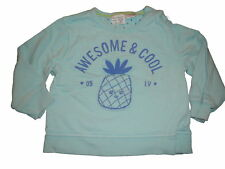 Zara toller Pullover / Sweatshirt Gr. 74 / 80 hellblau mit Ananas Motiv !!