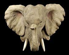 Elefantes Cabeza Relieve de Pared - Elefantenbüste Decoración Paquidermo Regalo