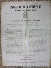Q67-STATO PONTIFICIO-MACERATA SULLA CUSTODIA DEI CANI 1853