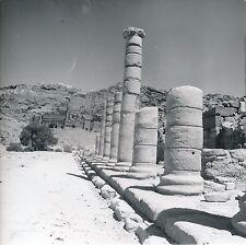 PÉTRA c. 1960 - Colonnes  Jordanie - Div 6147