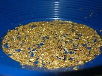 GOLD PAYDIRT UNSEARCHED CONCENTRATE 2+lbs CHUNKY PLACER NUGGETS PICKERS FLAKES
