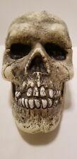 Big Macabre Scary Halloween Haunted Grinning Blow Mold Skull Head Prop Decor