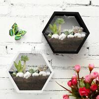Succulent Plant Flower Wall Pot Hexagon Vase Basket Storage Holder Garden Decor