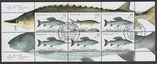 Bund H-Blatt 49 gest. Süßwasserfische 2015  Vollstempel Hamburg UNGEFALTET !!!