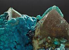 7337  Chrysokolla Quartz ca. 6*6,5*5cm lilly Mine Peru  MOVIE
