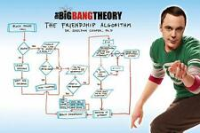 Big Bang Theory : Friend Algorithm - Maxi Poster 61cm x 91.5cm (new & sealed)