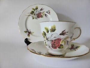 Queen Anne Vintage Bone China Teacup Trio, Floral Tea Cup, Saucer + Plate