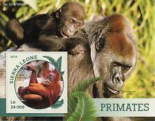Sierra Leona 2016 estampillada sin montar o nunca montada primates 1v S/S Animales Salvajes Monos Gorilas sellos