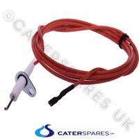 Burner Ignition Electrodes for Portotecnica Pressure Washers