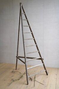 Vintage French Rustic Wooden Apple Ladder