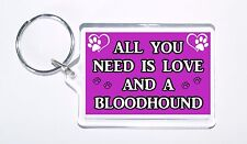 All You Need Is Love and a Bloodhound, Ideal Present, Keyring For Dog Lovers