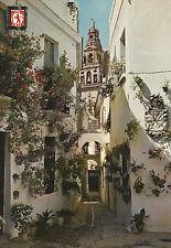 Tarjeta Postal - Cordoba / Calleja de las Flores