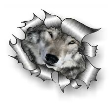 10Pcs CLASSIC Ripped Torn Metal Rip Cute Wild Wolf Wolves Face Eyes car sticker