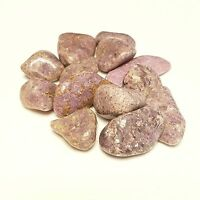 10-15  Natural Lepidolite tumbled Gemstone 1/4lb