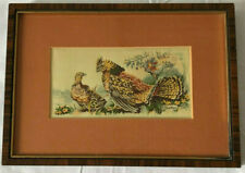 Vintage Cash's Collector Series Birds Ruffled Grouse Silk Woven Tapestry Picture