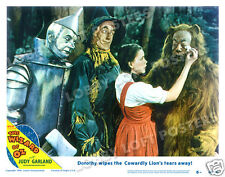 THE WIZARD OF OZ LOBBY SCENE CARD # 6 POSTER 1949-R DOROTHY COWARDLY LION