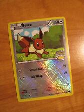EX LEAGUE Pokemon EEVEE Card BW DARK EXPLORERS Set 84/108 CITY Championships TCG