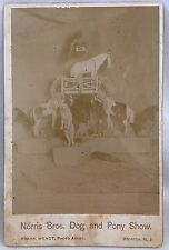 Rare 19th Century Advertising CDV Norris Bros Dog & Pony Show, Circus Animals