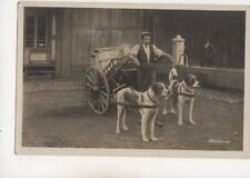 Switzerland Dog Cart / Milk Cart Vintage RP Postcard 646b