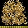 3 Gramm Echte Gold-Nuggets aus Alaska 1 mm 20-23 Karat Barren Schmuck Geschenk