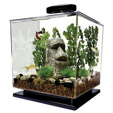 Fish Aquarium Cube Tank 3 Gallon Kit Filter Light Desk Goldfish Beta Home Indoor