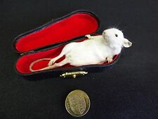 TAXIDERMY WHITE MOUSE no.6 resting in realistic miniature violin case.