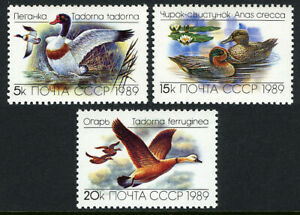 Russia 5783-5785, MNH. Ducks, 1989