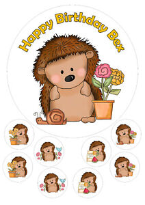 Hedgehog edible 7.5 Inch Round Iced Icing Cake Topper +8 toppers