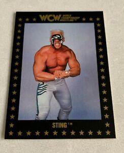 WCW STING 1991 Championship Marketing NWA Rookie RC Wrestling Card #49