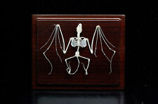 Bat skeleton mounted in plastic show case can hanging on wall Specimen