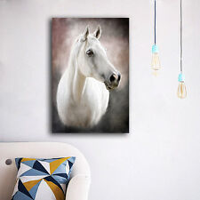 60×90×3cm White Horse Canvas Prints Framed Wall Art Home Decor Painting Gift II