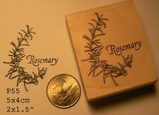 Rosemary herb plant rubber stamp WM P55