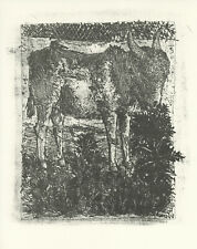 """Pablo Picasso """"The Donkey"""""""