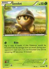 Steam Siege Common 2x Quantity Pokémon Individual Cards