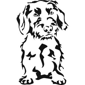 Wirehaired Dachshund Dog Stencil - A4/A5/A6