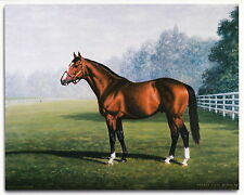 Northern Dancer Photo from oil painting 1964 Kentucky Derby Horse Racing