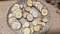 37 pack mix Bag Wood Log Cut Branch Slices Rustic craft disc Diy Tree Round hole