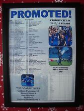 Cardiff City Championship runners-up 2018 - framed print