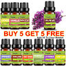 BUY5 GET5 Essential Oils Set Pure Aromatherapy Therapeutic Diffuser Burner 10ML