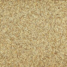 New listing Kaytee Supreme Bird Food lb 25 parakeets natural seeds grains finches