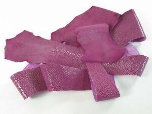 PELGIO Genuine Polished Stingray Skin Leather Hide Pelt Scraps 100 gram Purple