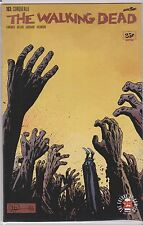 IMAGE THE WALKING DEAD #163,164,165,166,167,168,168V,169,170 DEATH ON THE ROAD ?