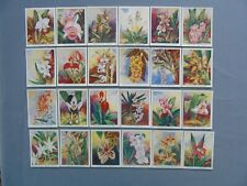 Carreras Full Set of 24 Large Cards of Orchids in Very Good to Excellent Con