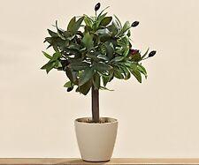Boltze Olivenbaum Pflanze Kunststoff Olivenzweige 40 cm grün